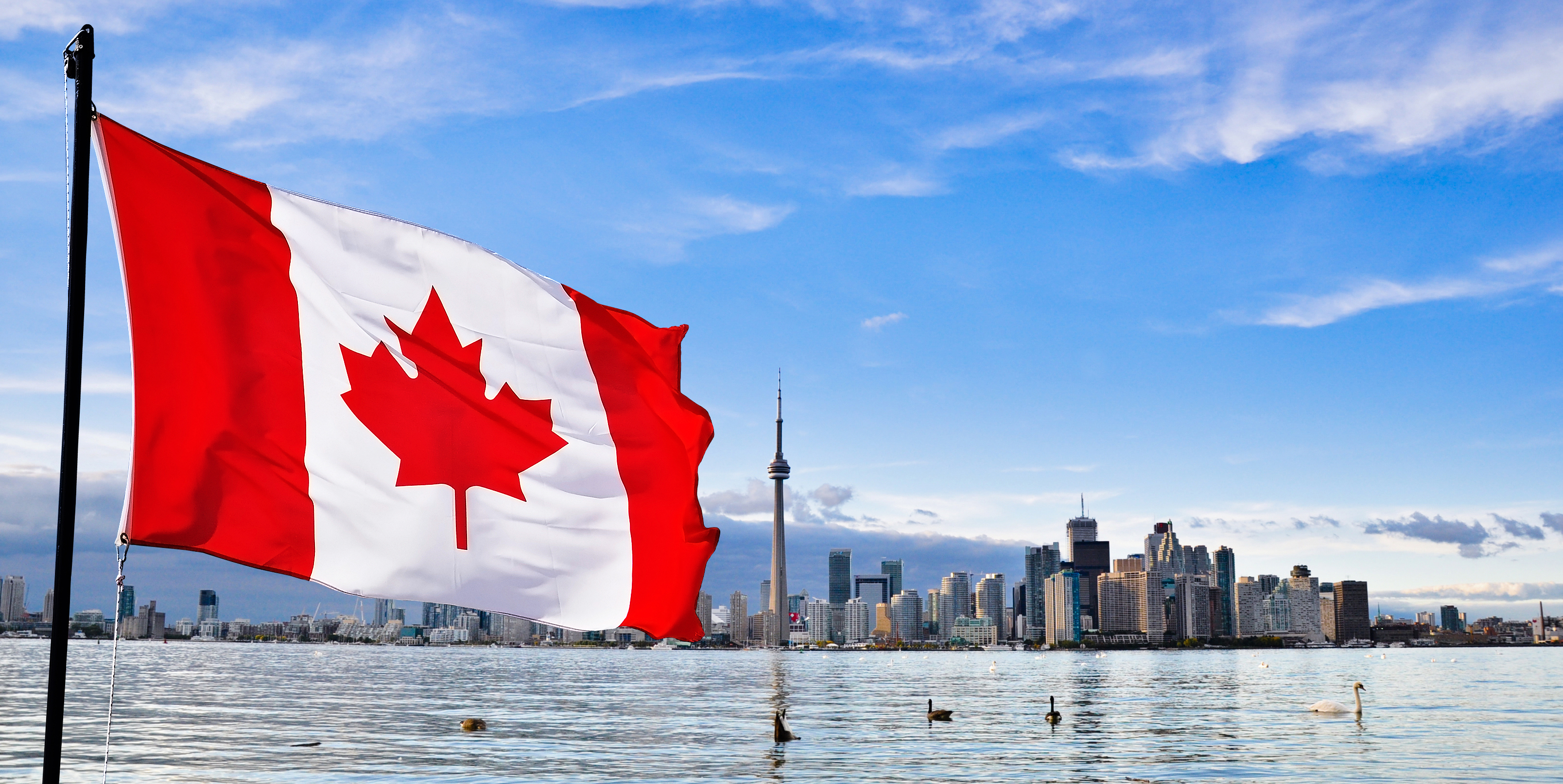 A Whole-of-Society Approach for a Healthier Canada | Team to ...